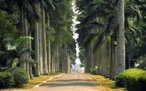 1-aburi-botanical-gardens-in-Accra-Ghana