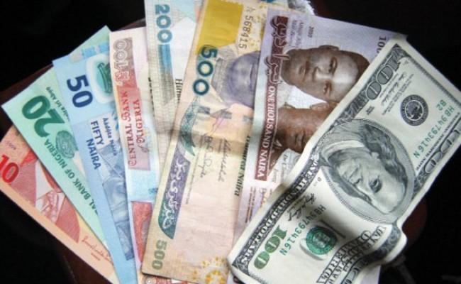naira_notes_3-650x400