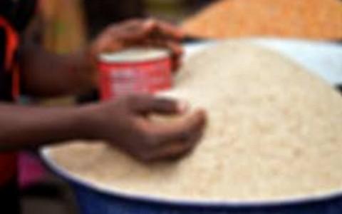 Rice 1-Fullscreen capture 8302016 51316 PM