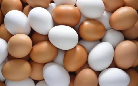 White-Brown-Fresh-Table-Chicken-Eggs
