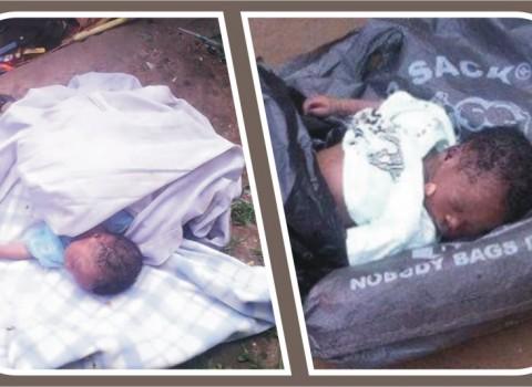dumped babies