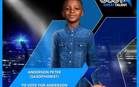 vote-anderson