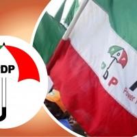 PDP 2019