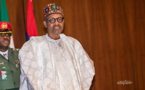 4. President Buhari FEC by NOVO ISIORO copy